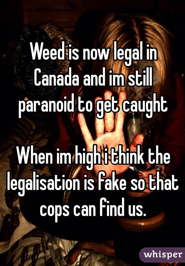 Weed is now legal in Canada and im still paranoid to get caught  When im high i think the legalisation is fake so that cops can find us.