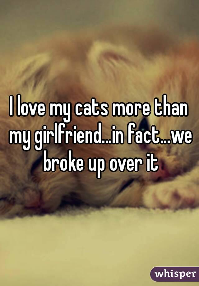 I love my cats more than my girlfriend...in fact...we broke up over it