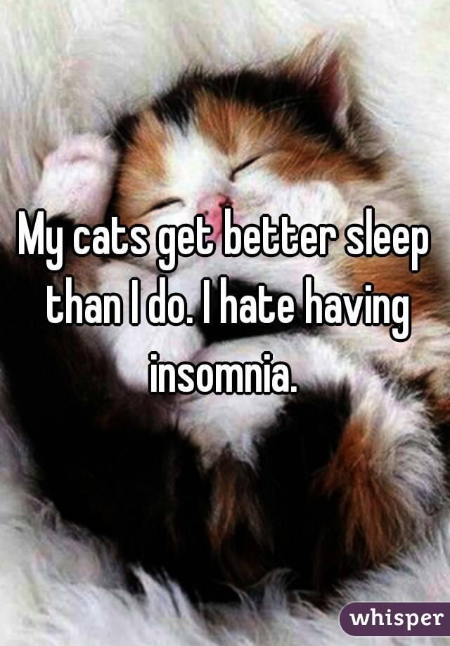 My cats get better sleep than I do. I hate having insomnia.