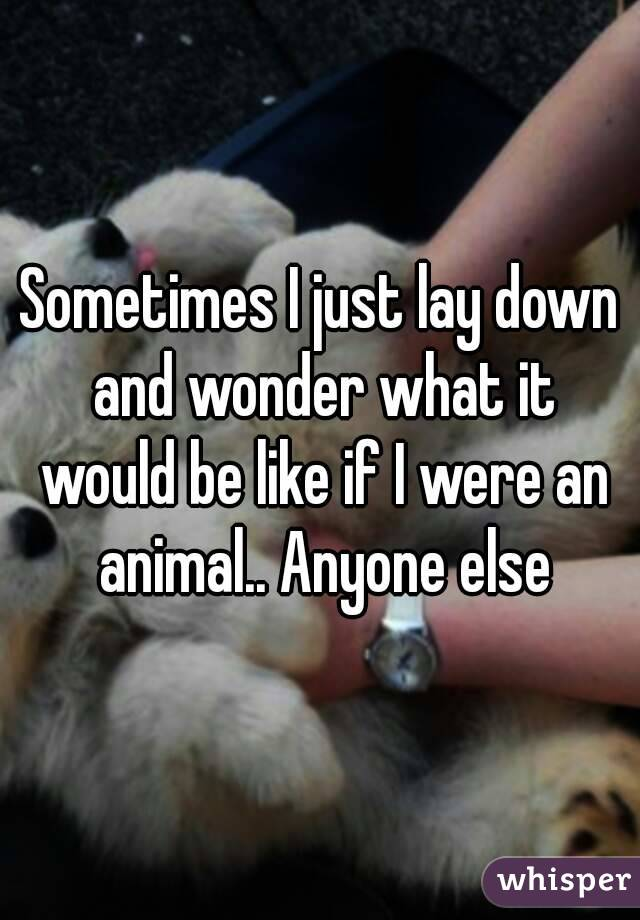 Sometimes I just lay down and wonder what it would be like if I were an animal.. Anyone else