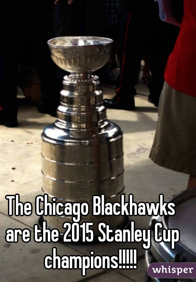The Chicago Blackhawks are the 2015 Stanley Cup champions!!!!!