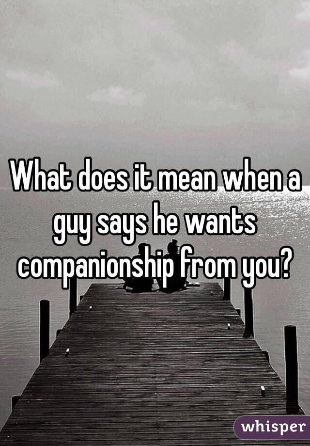 What does companionship mean
