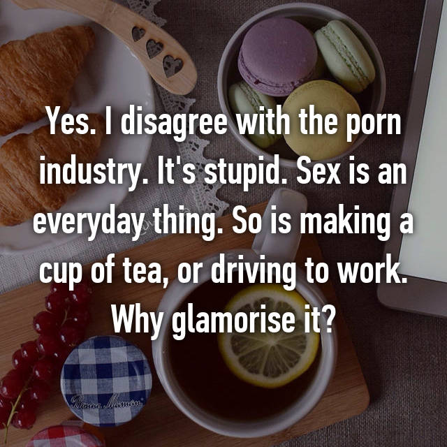 Yes. I disagree with the porn industry. It's stupid. Sex is an everyday thing. So is making a cup of tea, or driving to work. Why glamorise it?