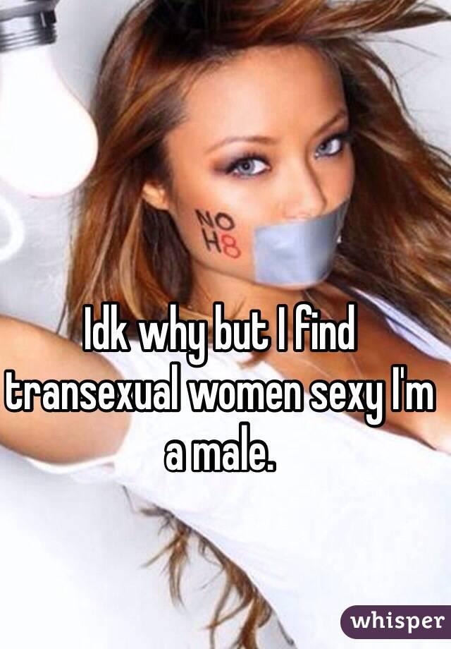 Sexy transexual women