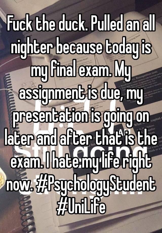 essay my study plan