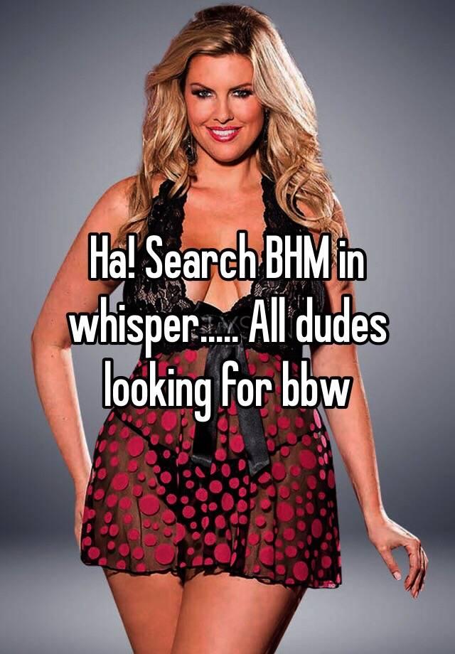 Bbw search
