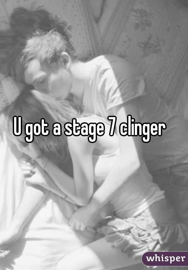 Stage 7 clinger