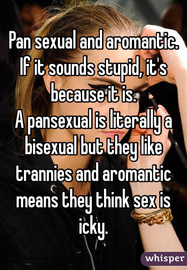 What does aromantic pansexual mean