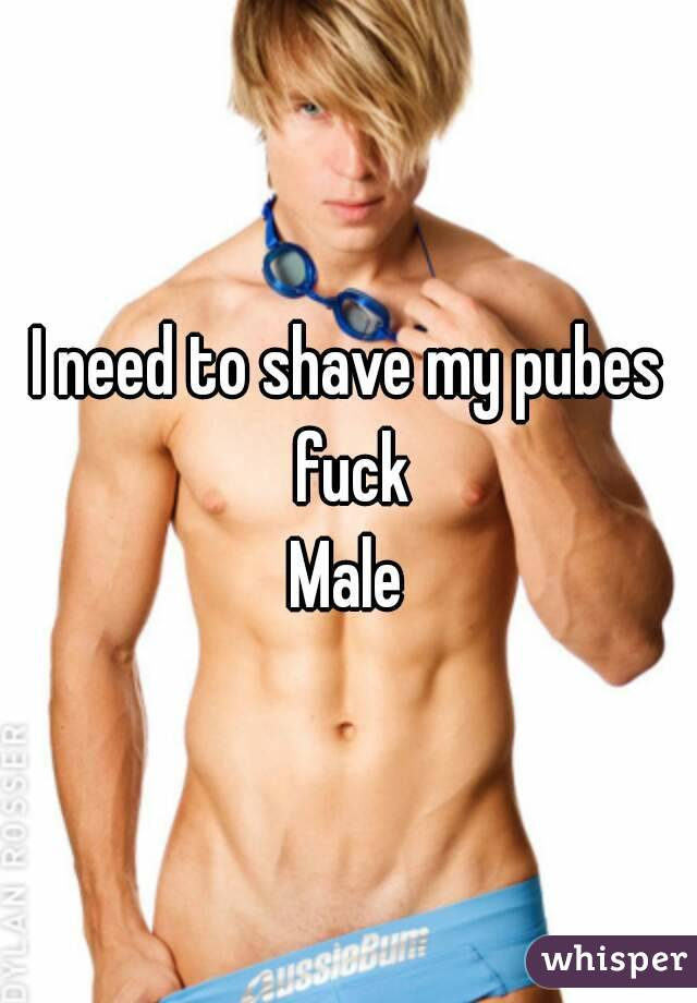 Shaved male pube photo