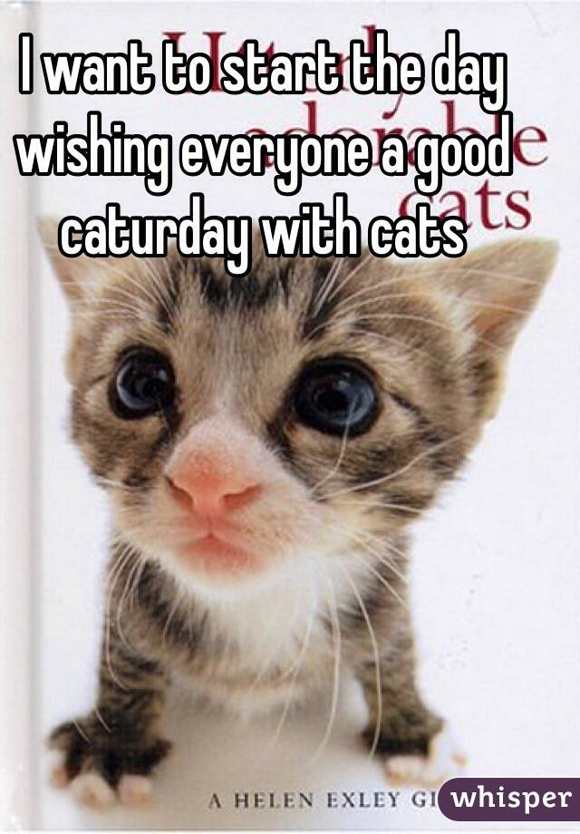 I want to start the day wishing everyone a good caturday with cats