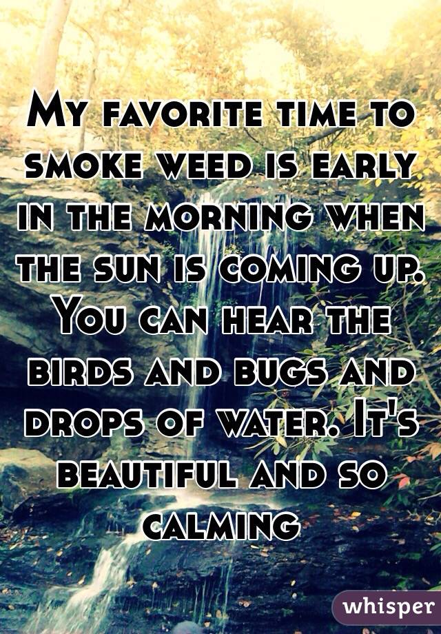 My favorite time to smoke weed is early in the morning when the sun is coming up. You can hear the birds and bugs and drops of water. It's beautiful and so calming