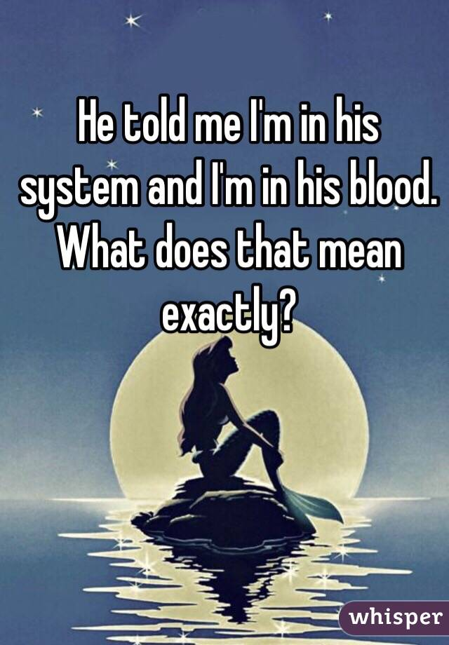 He told me I'm in his system and I'm in his blood. What does that mean exactly?