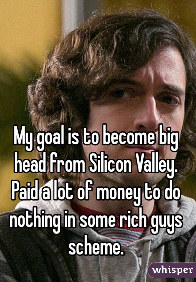 My goal is to become big head from Silicon Valley. Paid a lot of money to do nothing in some rich guys scheme.
