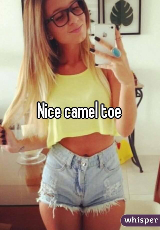 Are mistaken. Nice camel toe shorts understand