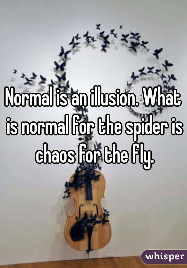 Is an illusion what is normal for the spider is chaos for the fly normal is an illusion what is normal for the spider is chaos for the fly altavistaventures Choice Image