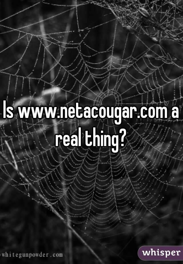 Netacougar
