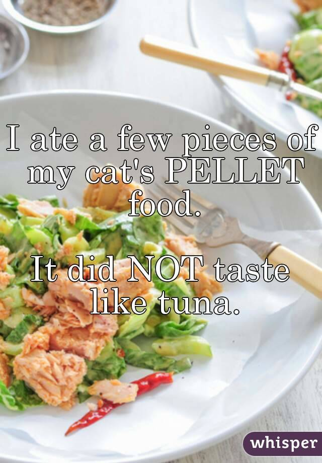 I ate a few pieces of my cat's PELLET food.  It did NOT taste like tuna.