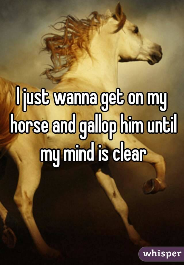 I just wanna get on my horse and gallop him until my mind is clear