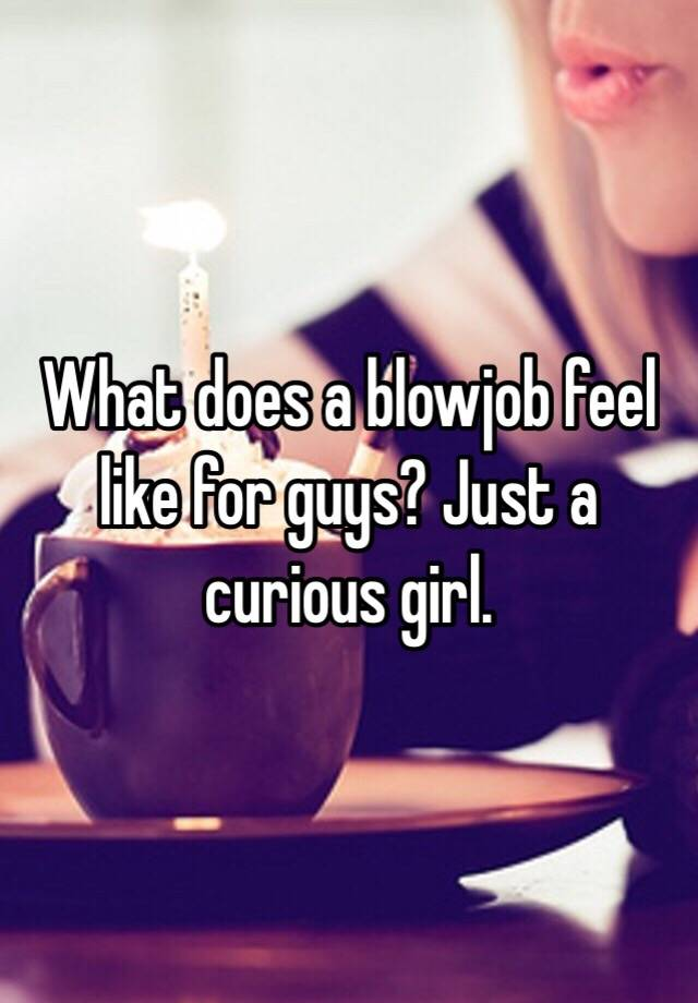 what does a blowjob feel like
