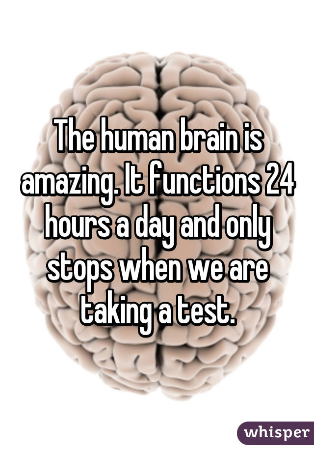 The human brain is amazing. It functions 24 hours a day and only ...