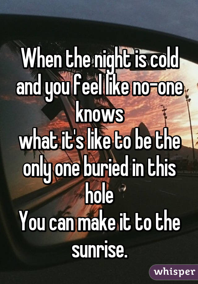 When the night is cold and you feel like no-one knows what it's like to be the only one buried in this hole You can make it to the sunrise.