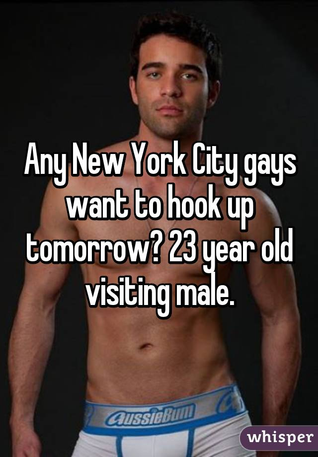 Any New York City gays want to hook up tomorrow? 23 year old visiting male.