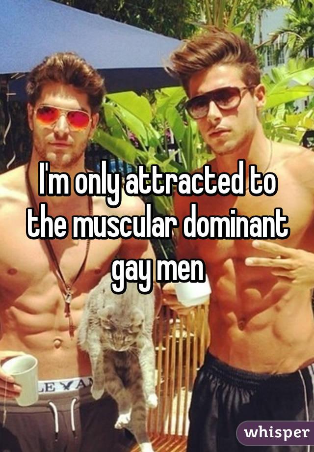 Gay st. west chester lenses