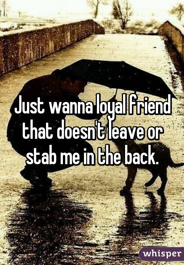 Just wanna loyal friend that doesn't leave or stab me in the back.