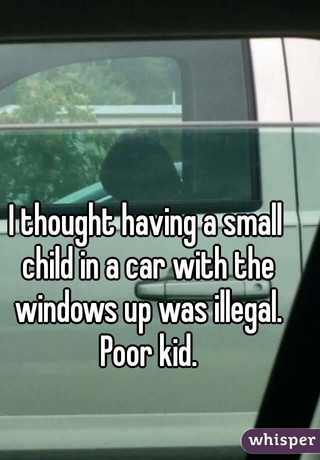 I thought having a small child in a car with the windows up was illegal. Poor kid.