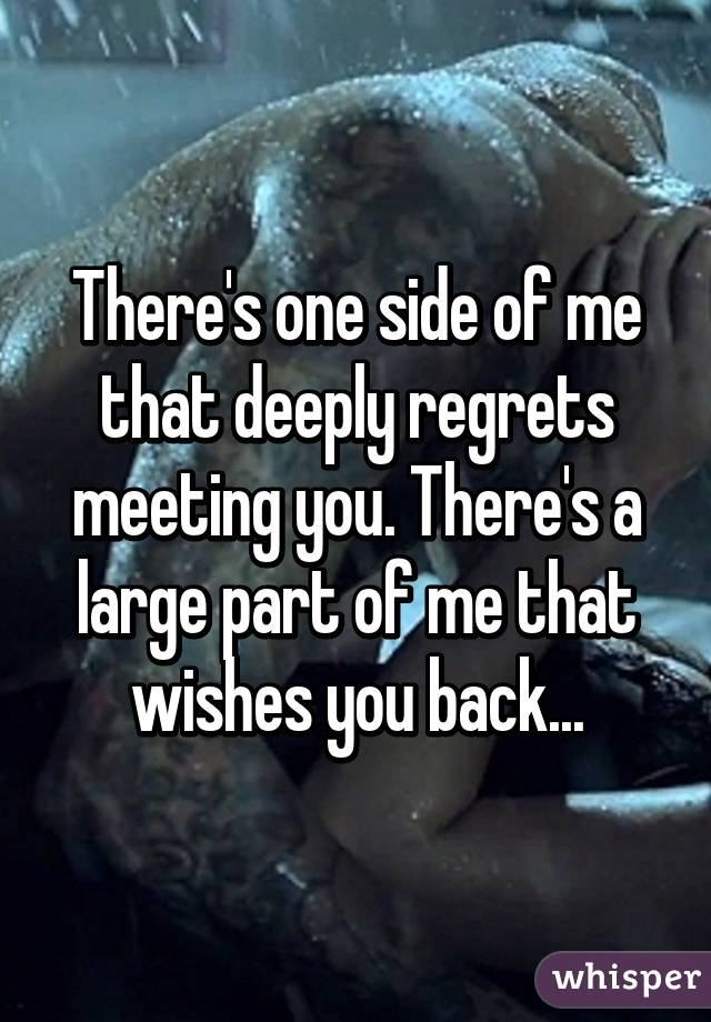 There's one side of me that deeply regrets meeting you. There's a large part of me that wishes you back...