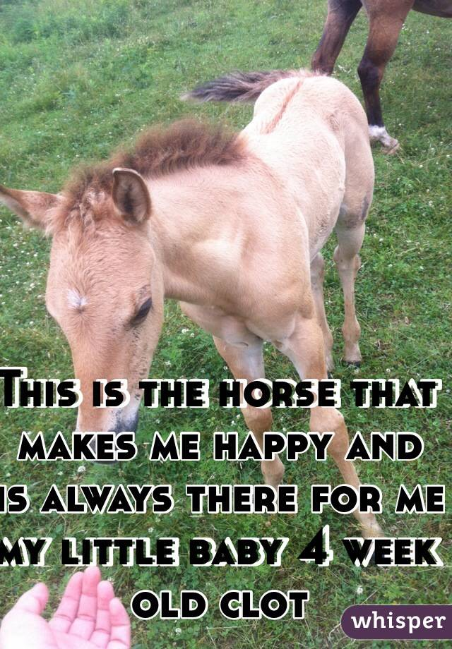 This is the horse that makes me happy and is always there for me my little baby 4 week old clot