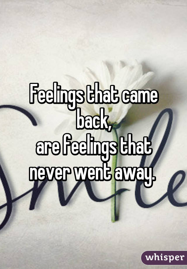 Feelings that came back, are feelings that never went away.