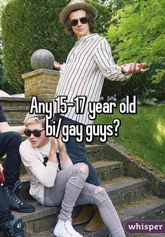 Any 15-17 year old bi/gay guys?