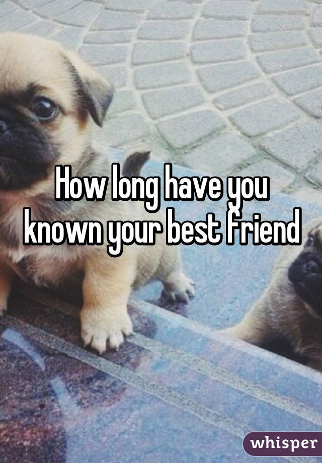 How long have you known your best friend