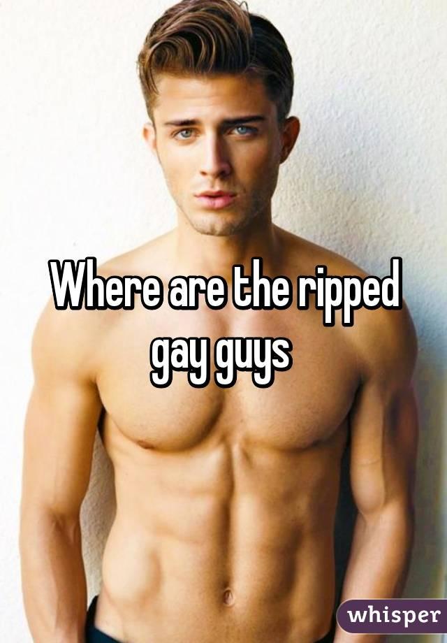 Ripped gay guys