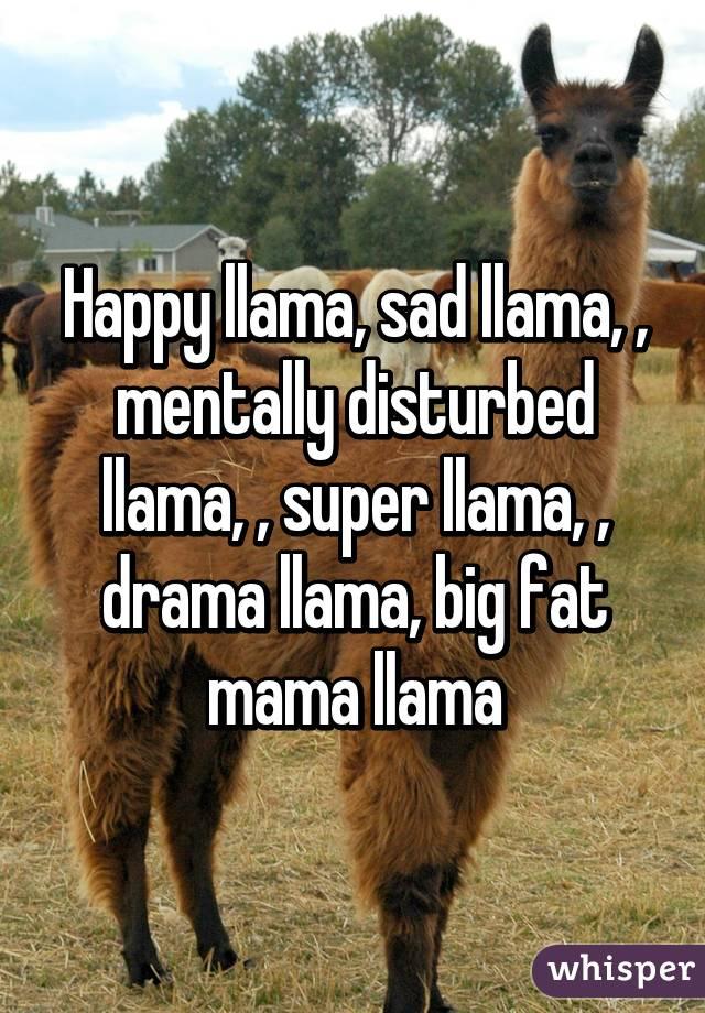 Happy Llama Sad Mentally Disturbed Super Drama Big Fat Mama