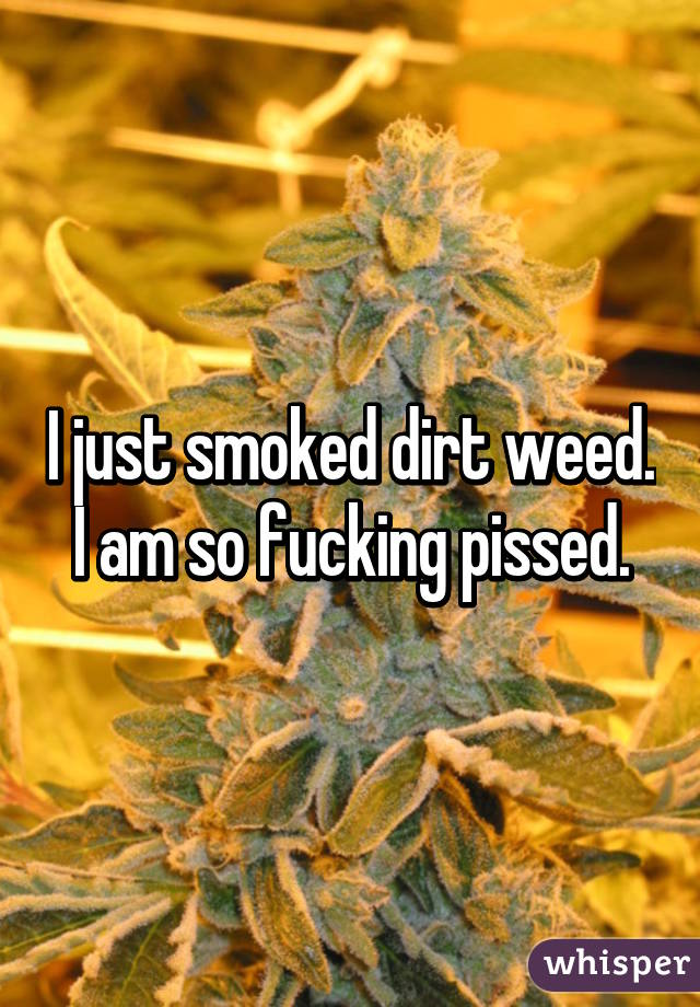 I just smoked dirt weed. I am so fucking pissed.