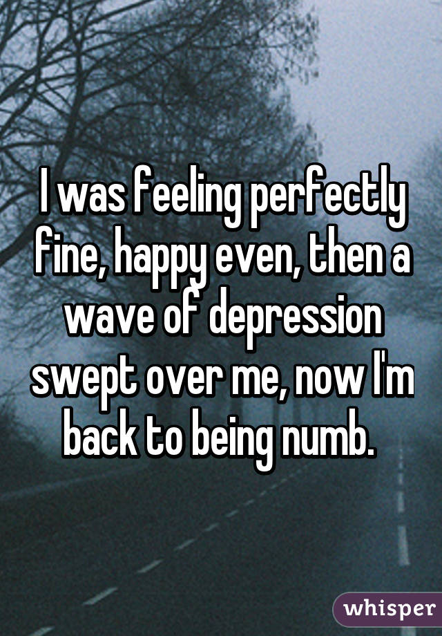 I was feeling perfectly fine, happy even, then a wave of depression swept over me, now I'm back to being numb.