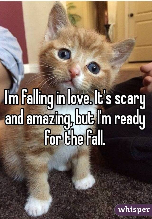 I'm falling in love. It's scary and amazing, but I'm ready for the fall.