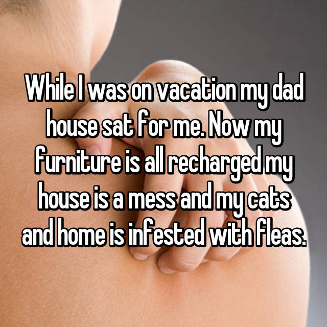 While I was on vacation my dad house sat for me. Now my furniture is all recharged my house is a mess and my cats and home is infested with fleas.