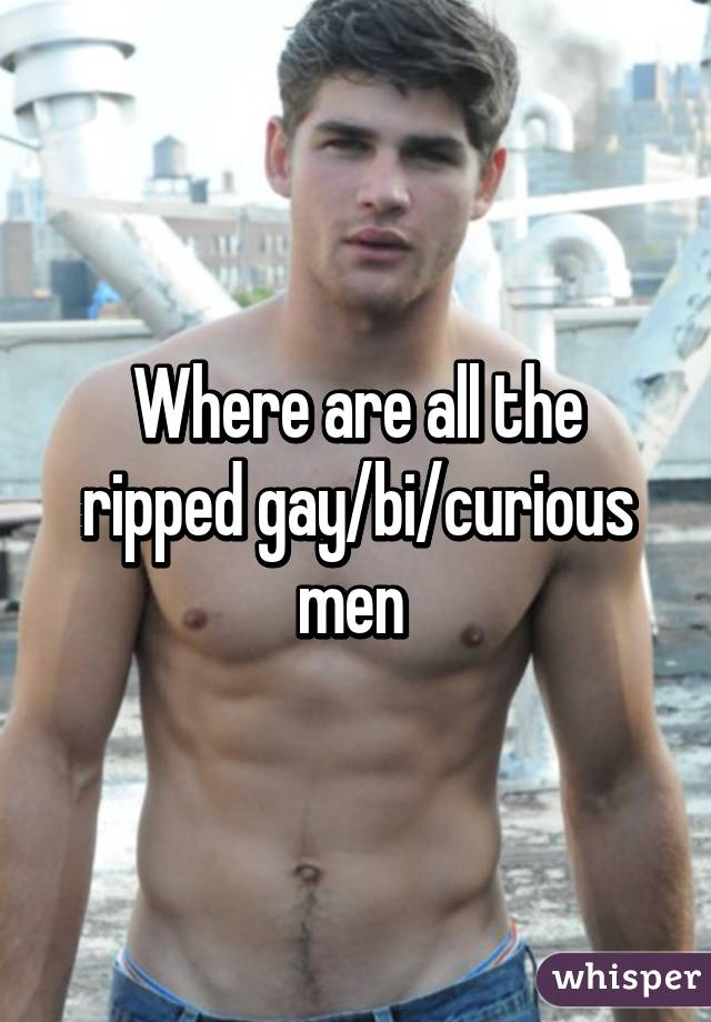 Gay curious men