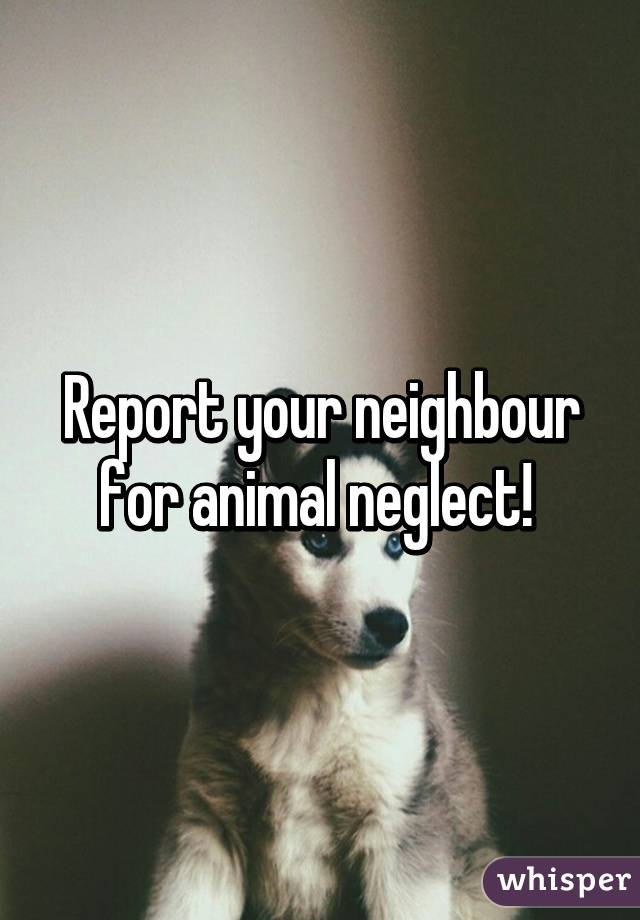 Report your neighbour for animal neglect!