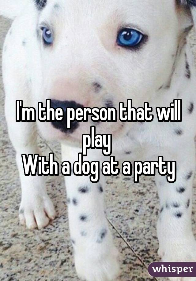 I'm the person that will play  With a dog at a party