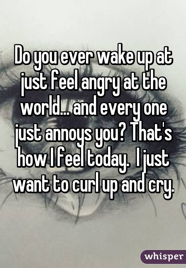 Do you ever wake up at just feel angry at the world... and every one just annoys you? That's how I feel today.  I just want to curl up and cry.