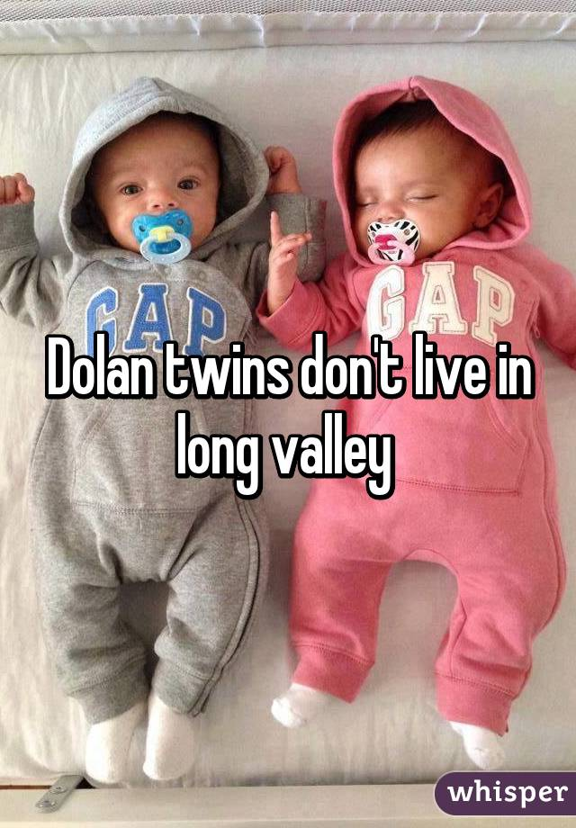 So I go to school with the Dolan twins who are vine famous and they