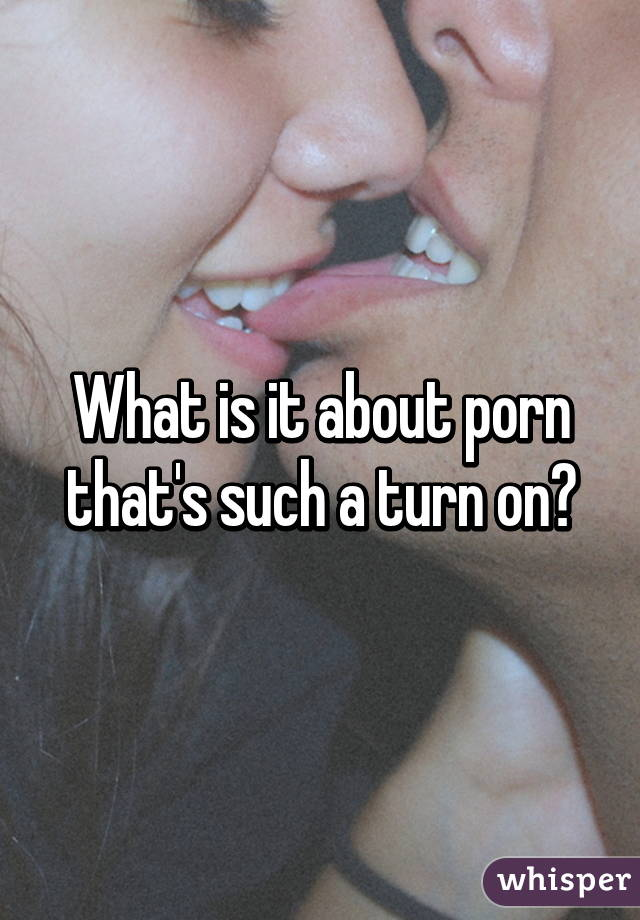 What is it about porn that's such a turn on?