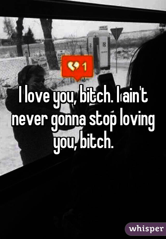 I love you, bitch. I ain't never gonna stop loving you, bitch.