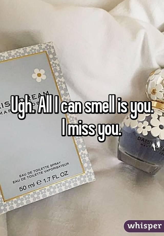 Ugh. All I can smell is you.       I miss you.