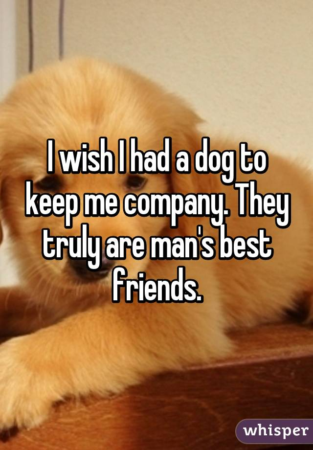 I wish I had a dog to keep me company. They truly are man's best friends.