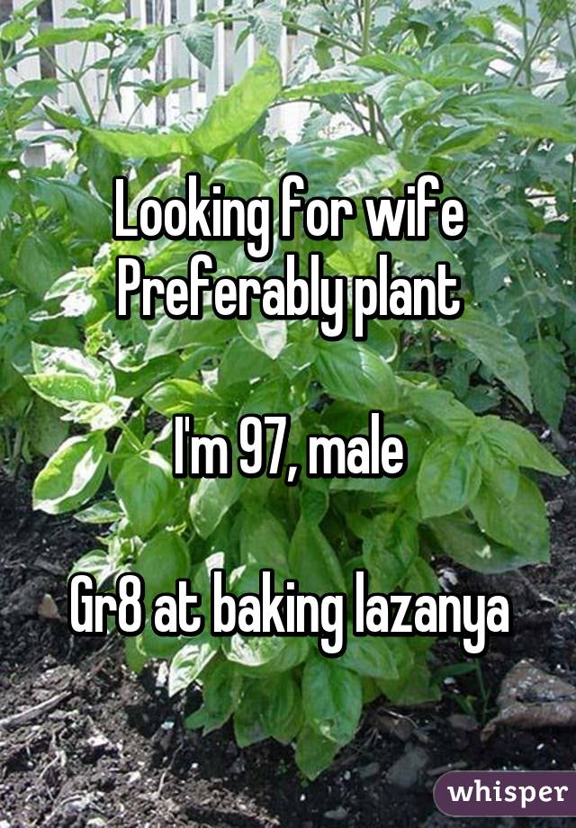 Looking for wife Preferably plant  I'm 97, male  Gr8 at baking lazanya